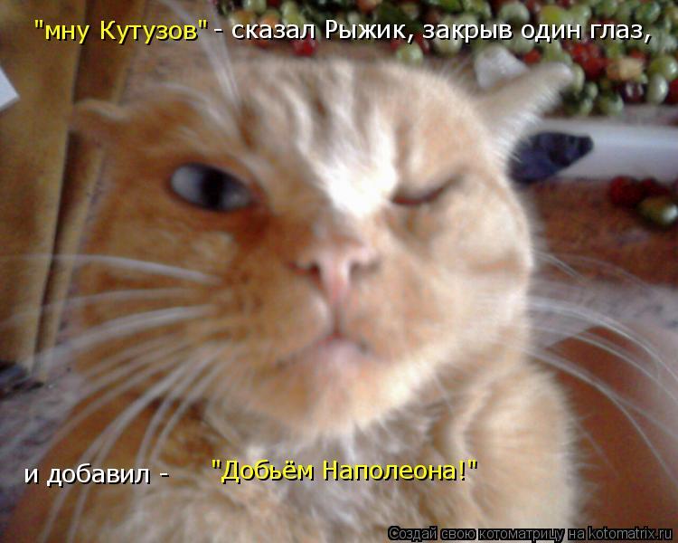 """Котоматрица: """"мну Кутузов"""" - сказал Рыжик, закрыв один глаз,  и добавил -  """"Добьём Наполеона!"""""""
