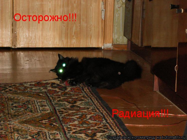 Котоматрица: Осторожно!!! Радиация!!!
