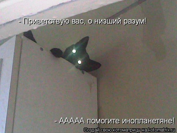 Котоматрица: - ААААА помогите инопланетяне! - Приветствую вас, о низший разум!