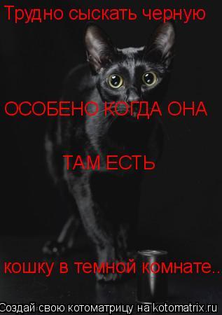 Котоматрица: Трудно сыскать черную Трудно сыскать черную кошку в темной комнате... ОСОБЕНО КОГДА ОНА ТАМ ЕСТЬ