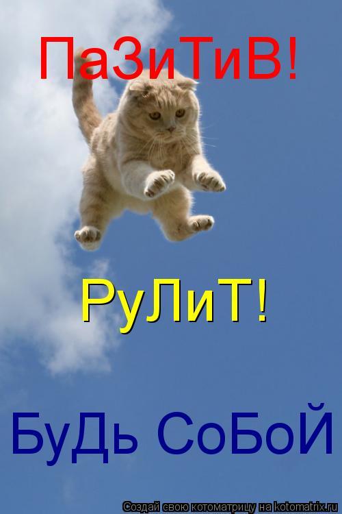 Котоматрица: ПаЗиТиВ! РуЛиТ! БуДь СоБоЙ!