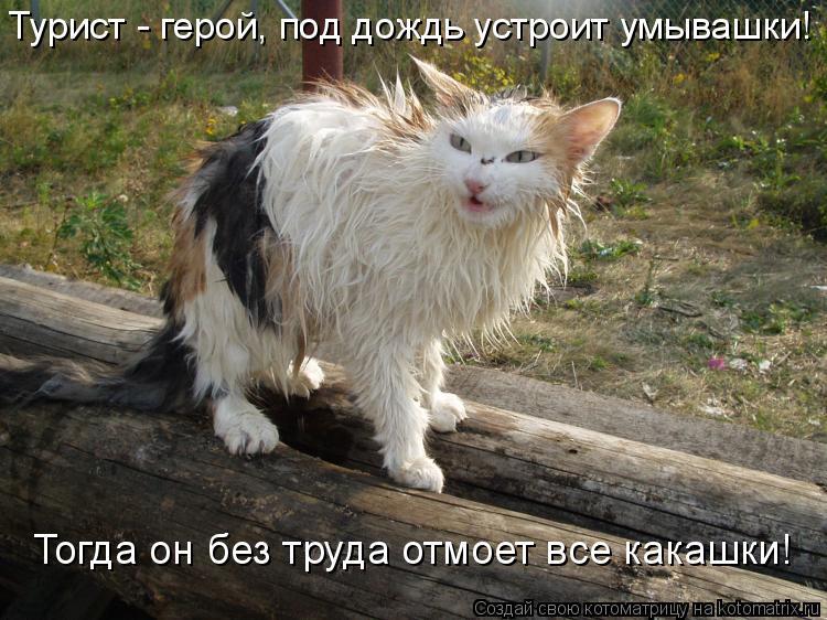 Котоматрица: Турист - герой, под дождь устроит умывашки! Тогда он без труда отмоет все какашки!