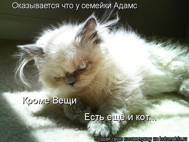 Котоматрица: Оказывается что у семейки Адамс Кроме Вещи Есть ещё и кот...