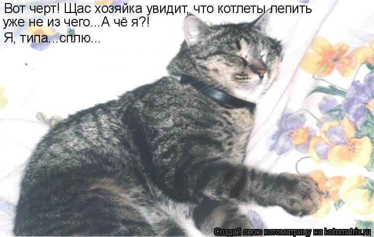 Котоматрица: Вот черт! Щас хозяйка увидит, что котлеты лепить  уже не из чего...А чё я?! Я, типа...сплю...