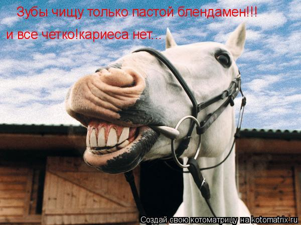 Котоматрица: Зубы чищу только пастой блендамен!!! и все четко!кариеса нет...
