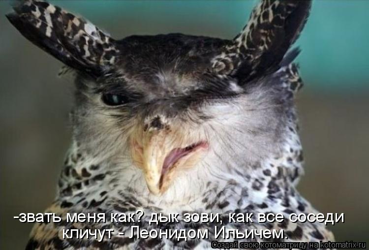 Котоматрица: -звать меня как? дык зови, как все соседи  кличут - Леонидом Ильичем.