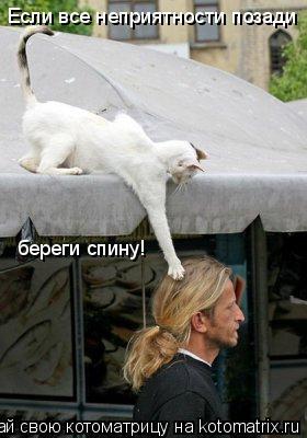 Котоматрица: Если все неприятности позади   береги спину!