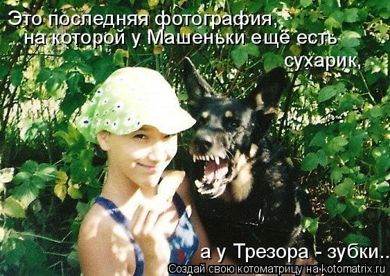 Котоматрица: Это последняя фотография, на которой у Машеньки ещё есть сухарик, а у Трезора - зубки....