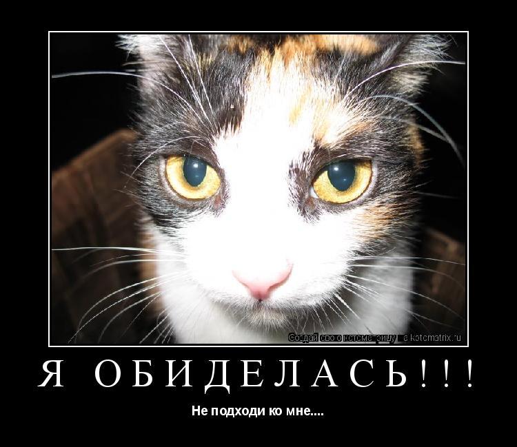 Котоматрица: Я ОБИДЕЛАСЬ!!! Не подходи ко мне....