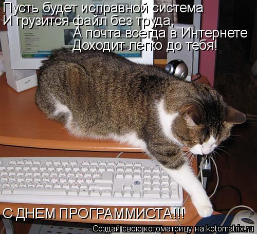 Котоматрица: Пусть будет исправной система И грузится файл без труда,   А почта всегда в Интернете Доходит легко до тебя! С ДНЕМ ПРОГРАММИСТА!!!