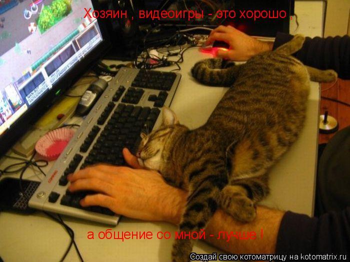 Котоматрица: Хозяин , видеоигры - это хорошо , а общение со мной - лучше !