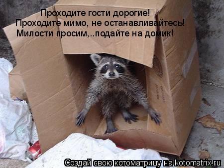 Котоматрица: Проходите гости дорогие! Проходите мимо, не останавливайтесь! Милости просим,..подайте на домик!