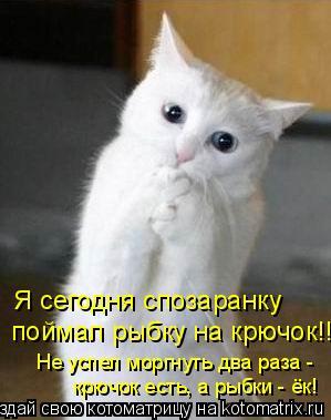 Котоматрица: Я сегодня спозаранку   поймал рыбку на крючок!!! Не успел моргнуть два раза - крючок есть, а рыбки - ёк!