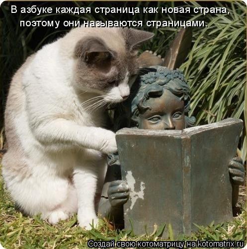 Котоматрица: В азбуке каждая страница как новая страна,  поэтому они называются страницами.