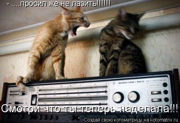 Котоматрица: - ....просил же не лазить!!!!!! Смотри что ты теперь наделала!!!