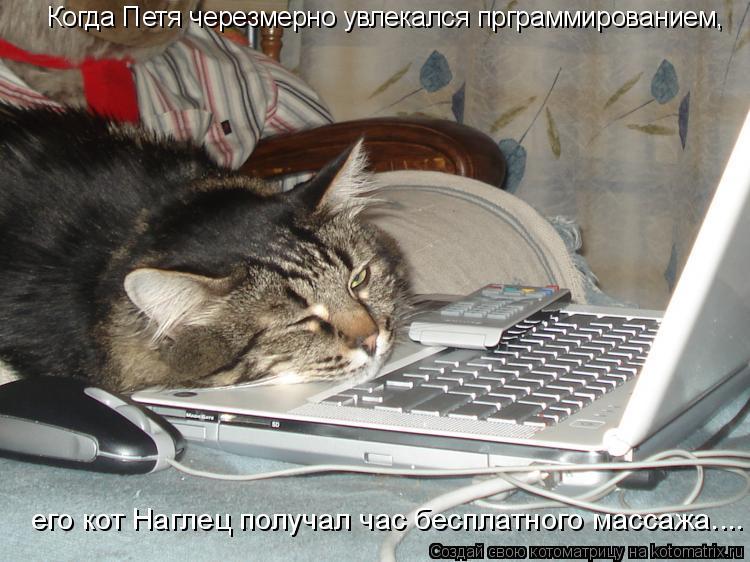 Котоматрица: Когда Петя черезмерно увлекался прграммированием, его кот Наглец получал час бесплатного массажа....