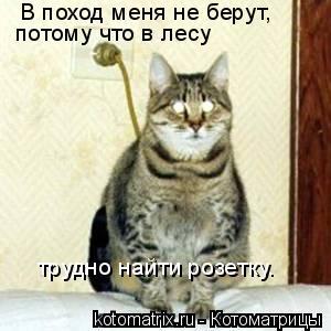 Котоматрица: В поход меня не берут,  потому что в лесу  трудно найти розетку.