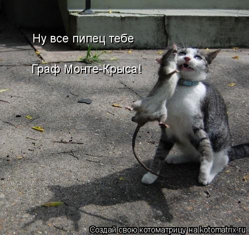 Котоматрица: Ну все пипец тебе  Граф Монте-Крыса!