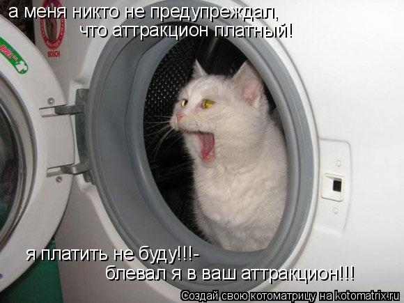 Котоматрица: а меня никто не предупреждал,  что аттракцион платный! я платить не буду!!!- блевал я в ваш аттракцион!!!