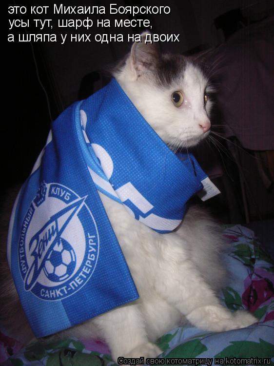 Котоматрица: это кот Михаила Боярского усы тут, шарф на месте, а шляпа у них одна на двоих
