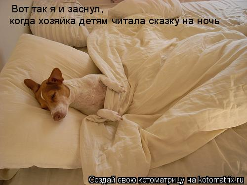 Котоматрица: Вот так я и заснул, когда хозяйка детям читала сказку на ночь