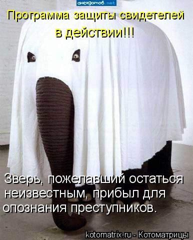 http://kotomatrix.ru/images/lolz/2009/09/14/357776.jpg
