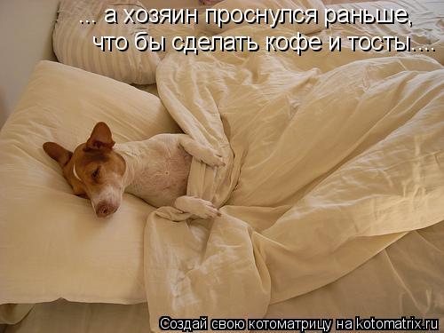 Котоматрица: ... а хозяин проснулся раньше,  что бы сделать кофе и тосты....
