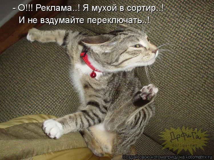 Котоматрица: - О!!! Реклама..! Я мухой в сортир..!  И не вздумайте переключать..!