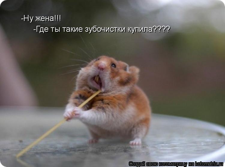 http://kotomatrix.ru/images/lolz/2009/09/14/357838.jpg