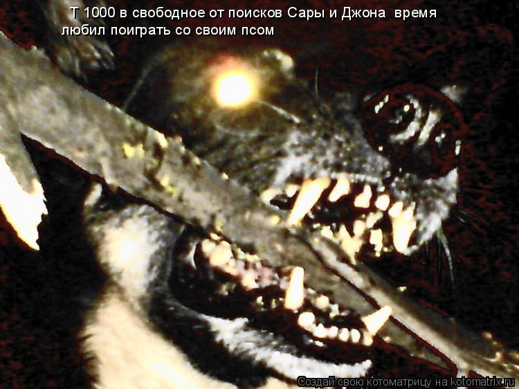 Котоматрица: любил поиграть со своим псом Т 1000 в свободное от поисков Сары и Джона  время