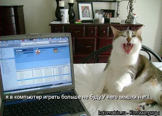 Котоматрица: я в компьютер играть больше не буду.У него мышки нет.!..