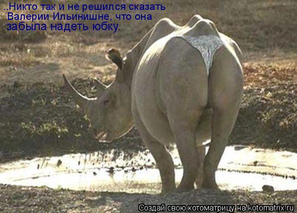 Котоматрица: ..Никто так и не решился сказать Валерии Ильинишне, что она забыла надеть юбку.