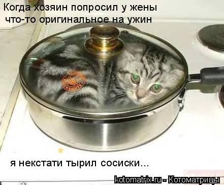 Котоматрица: Когда хозяин попросил у жены что-то оригинальное на ужин я некстати тырил сосиски...