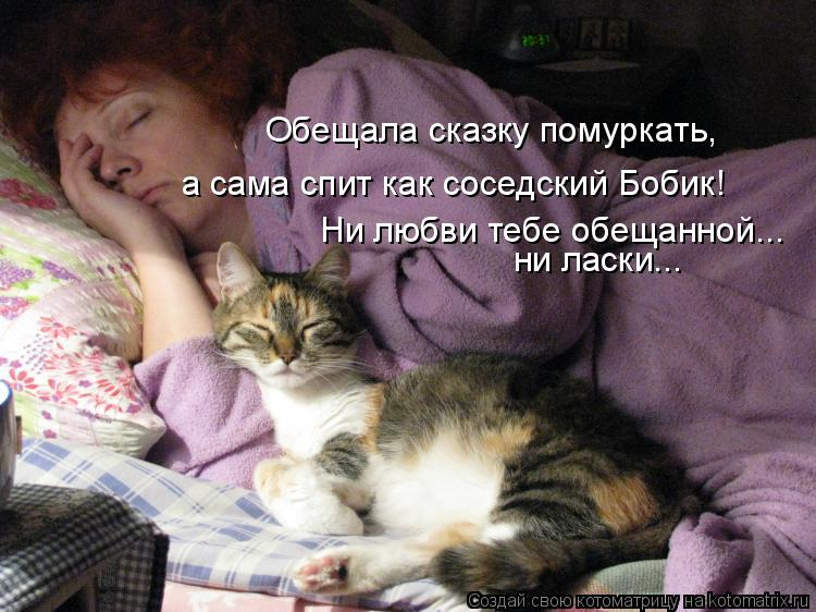 Котоматрица: Обещала сказку помуркать,  а сама спит как соседский Бобик! Ни любви тебе обещанной... ни ласки...