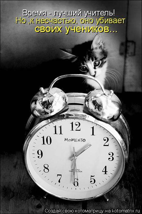Котоматрица: Время - лучший учитель! Но ,к несчастью, оно убивает своих учеников...