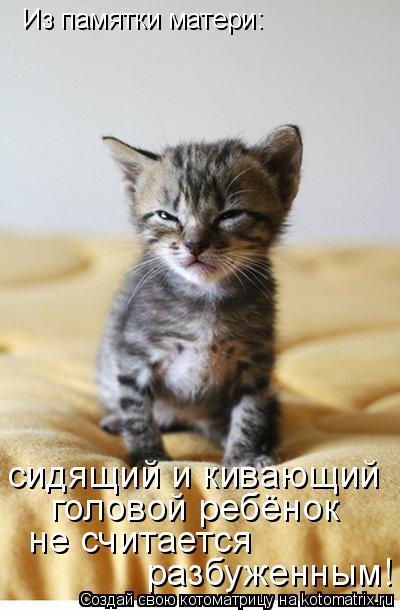 Котоматрица: Из памятки матери: сидящий и кивающий  головой ребёнок не считается разбуженным!