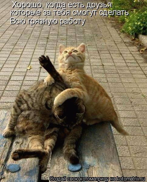 Котоматрица: Хорошо, когда есть друзья которые за тебя смогут сделать Всю грязную работу