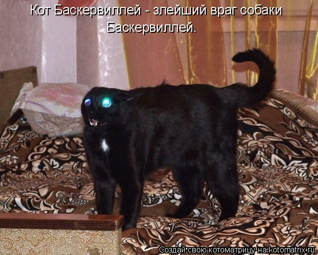 Котоматрица: Кот Баскервиллей - злейший враг собаки  Баскервиллей.
