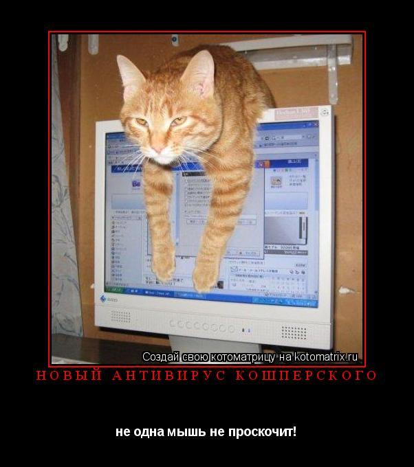 Котоматрица: новый антивирус Кошперского не одна мышь не проскочит!