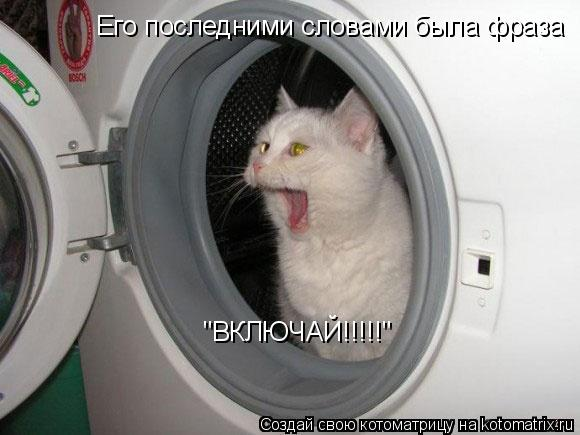 """Котоматрица: Его последними словами была фраза """"ВКЛЮЧАЙ!!!!!"""""""
