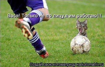Котоматрица: Вася! Только не по лицу,я им работаю!!!