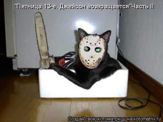 """Котоматрица: """"Пятница 13-е. Джейсон возвращается""""Часть II"""