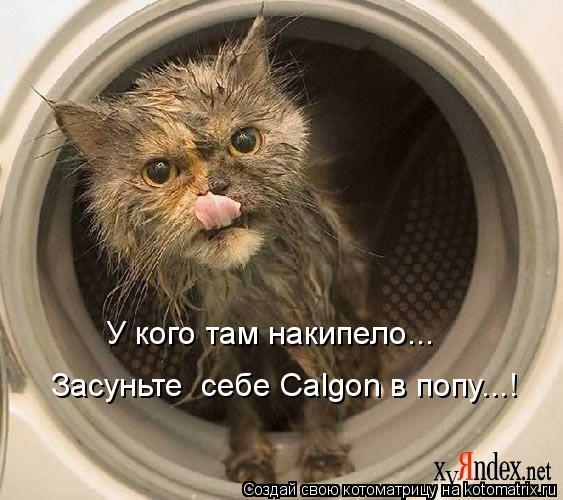 Котоматрица: У кого там накипело... Засуньте  себе Calgon в попу...!