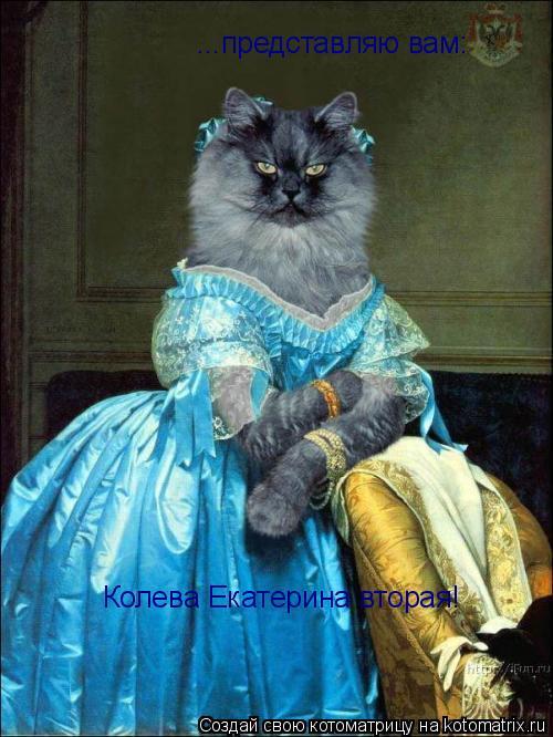 Котоматрица: Колева Екатерина вторая! ...представляю вам:
