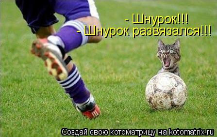 сша футбол
