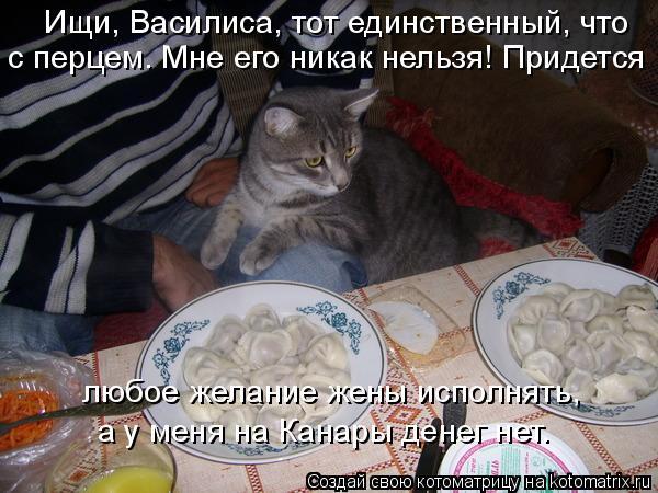 Котоматрица: Ищи, Василиса, тот единственный, что   с перцем. Мне его никак нельзя! Придется любое желание жены исполнять,  а у меня на Канары денег нет.