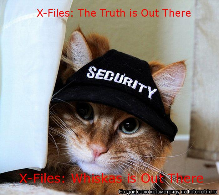Котоматрица: X-Files: The Truth is Out There X-Files: Whiskas is Out There