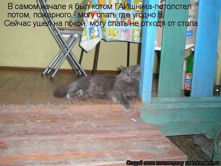 Котоматрица: В самом начале я был котом ГАИшника-потолстел потом, пожарного - могу спать где угодно Сейчас ушел на покой, могу спать не отходя от стола