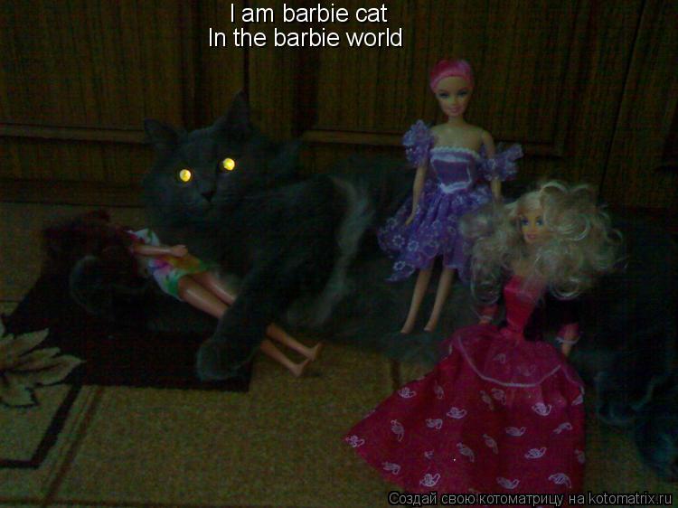 Котоматрица: I am barbie cat In the barbie world