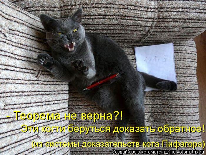 Котоматрица: - Теорема не верна?!  Эти когти беруться доказать обратное! (из системы доказательств кота Пифагора)